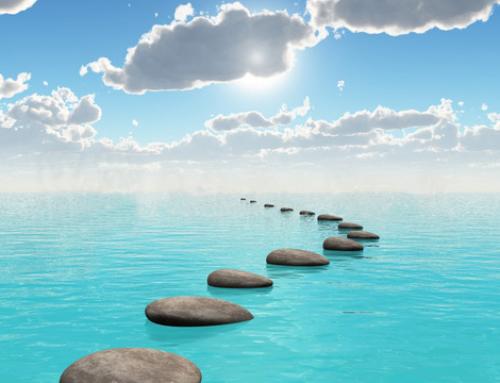 Fluire con l'infinito, Intensivo di Meditazione con Neeraja