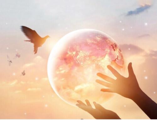 La storia di Gesù: unione tra l'umano e il divino