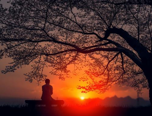 Namaste – July 1